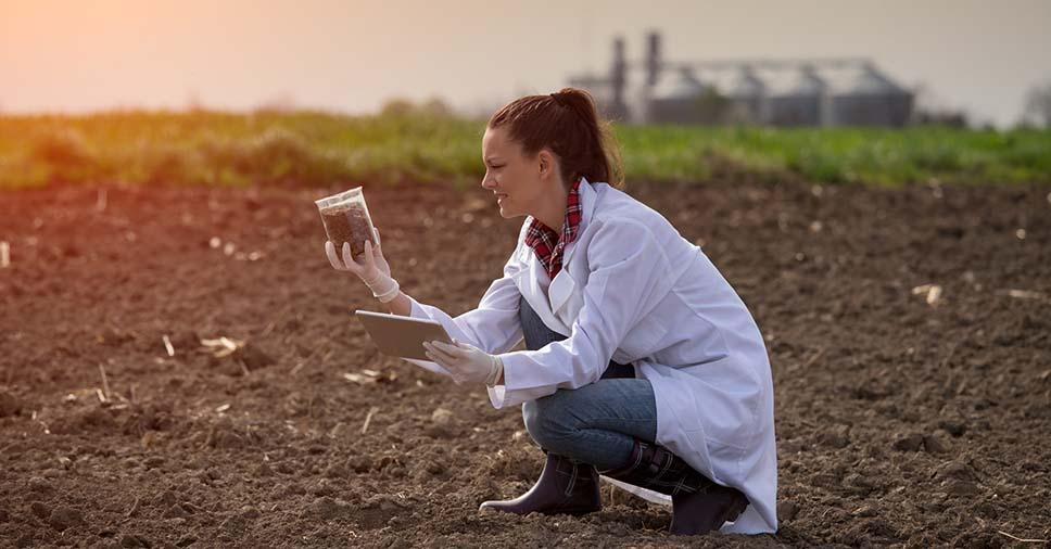 Conheça as diretrizes da qualidade do solo