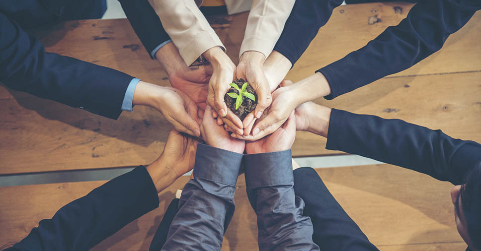 Conheça 5 formas de implementar o consumo consciente na empresa